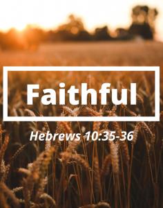 Faithful Series | Nov 10-17, 2019